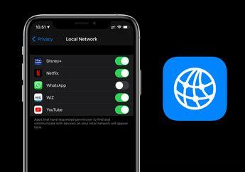 Mengenal Fungsi Pengaturan Privacy Local Network di iOS 14