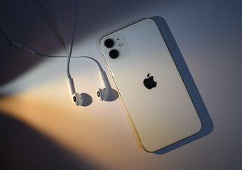 Update iOS 14.2 Beta Bocorkan Info iPhone 12 Dijual Tanpa EarPods