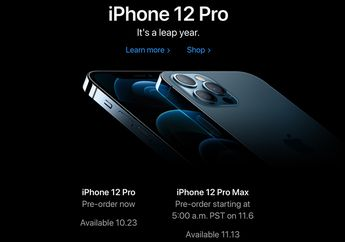 Apple Online Store Buka Pre-Order iPhone 12, 12 Pro dan iPad Air 4