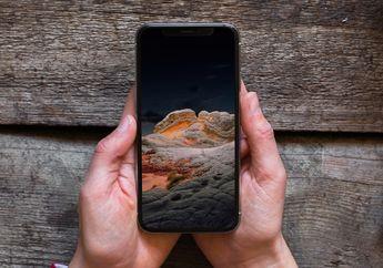 Yuk Download Wallpaper Baru di iOS 14.2! Tema Alam Pegunungan