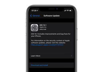 Update iOS 14.1 Bawa Sejumlah Perbaikan dan Mendukung 10-bit HDR