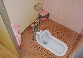 Mengenal Bagian-bagian pada Toilet Duduk dan Jongkok Hingga Cara Kerjanya
