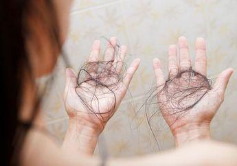 Stop Pakai Sampo! 8 Obat Rontok Rambut Alami Ini Paling Ampuh Atasi Masalah Kepala!