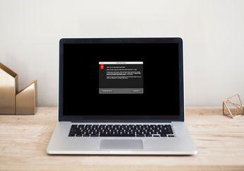 Adobe Berhenti Mendukung Flash Player di Mac, Segera Uninstall