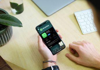 WhatsApp Tunda Kebijakan Aturan Privasi Terbaru yang Bikin Bingung