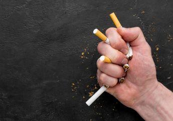 Bikin Dilema Perokok, Berhenti Merokok Berat Badan Jadi Naik Drastis?