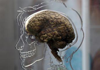 Berpikir Diri Sudah Mati, Bisa Jadi Anda Mengidap Masalah Kejiwaan Bernama Sindrom Cotard