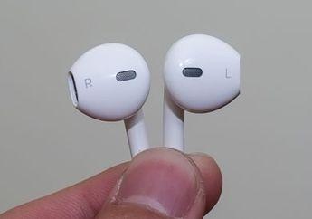 Bukti Apple Siap Lahirkan EarPods Nirkabel dengan Nama AirPods