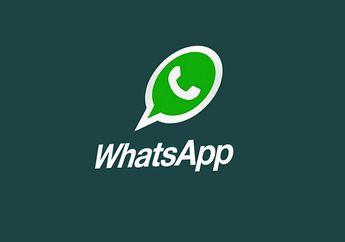 Fitur Voice Call WhatsApp Akan Menggunakan Layanan Skype