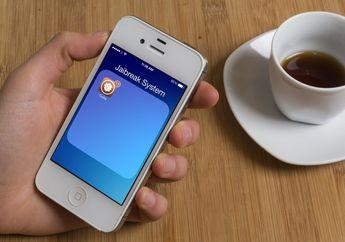 Cydia Hadir Dengan Pembaruan Tampilan Ikon iOS 7