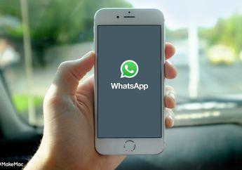 WhatsApp Business Resmi Rilis di Indonesia, Apa Saja Fiturnya?