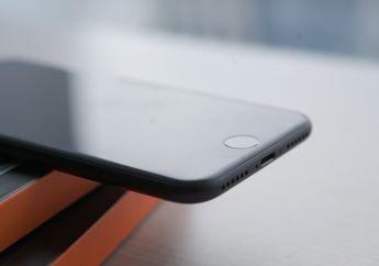 iPhone 8 Layar 4,7 Inci Tak Bakal Kebagian Layar OLED