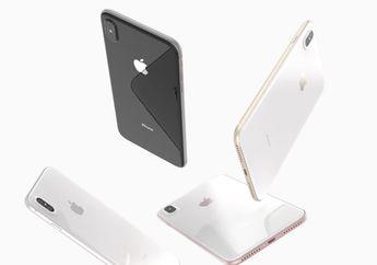 (Rumor) Apple Siapkan iPhone LCD 6+ Inci Baru buat 2018