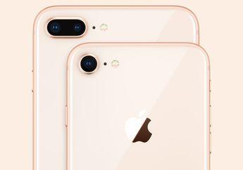 Case iPhone 7 & iPhone 7 Plus Bisa Digunakan di iPhone 8 & iPhone 8 Plus