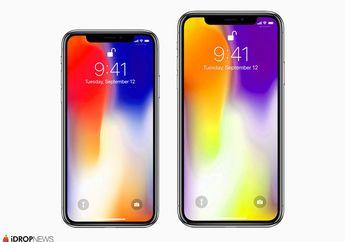 LG Display Siap Pasok Layar OLED buat iPhone baru 6,5 Inci