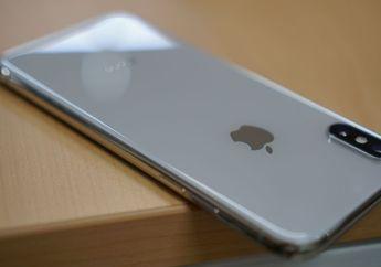 Macotakara: iPhone 6.1 inci dengan Layar LCD Hadir Dalam 6 Pilihan Warna