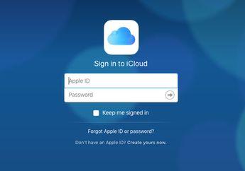 iCloud Berhasil Membantu Penangkapan Tukang Spam Terbesar di Dunia