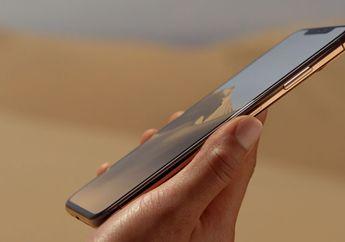 iPhone Xs Max Dapat Gelar Layar Smartphone Terbaik dari DisplayMate