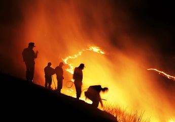 Kebakaran Hebat, Swedia Harus Meminta Bantuan ke Negara Tetangga