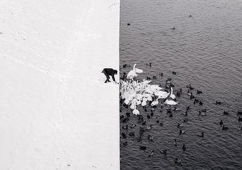Salju dan Kehidupan