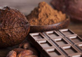 Peneliti: Cokelat Lebih Ampuh Mengobati Batuk Dibanding Obat-obatan