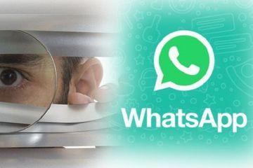 Dengan Aplikasi Ini Kamu Bisa Intip Status Pengguna WhatsApp