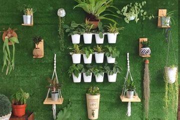 Ternyata Vertical Garden Bisa Atasi Hal Yang Penting Ini Di Rumah Idea