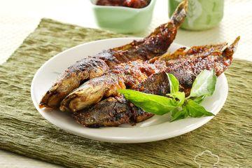 Masih Mau Makan Malam Dengan Ikan Lele Setelah Tahu Fakta Penyakit Mematikan Ini Ngeri Banget Semua Halaman Sajian Sedap