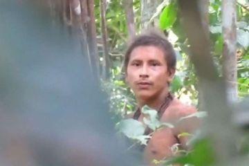 Deforestasi Semakin Parah, Wajah Suku Terasing di Hutan Amazon Terungkap