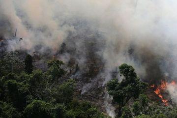 Satelit Luar Angkasa Ungkap Tingkat Polusi Udara Akibat Kebakaran Hutan Amazon