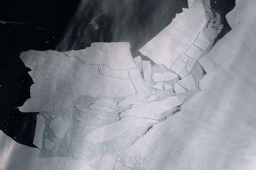 Bulan Ini, Antartika Mengalami Suhu Terpanas Sepanjang Sejarah