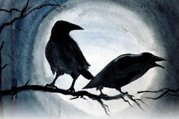 5 Mitos Seram Burung Gagak Hadirnya Makhluk Astral Hingga Kematian Semua Halaman Sonora Id
