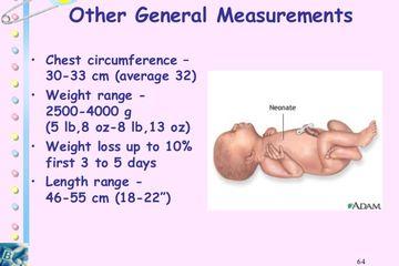 24+ Panjang badan bayi normal ideas