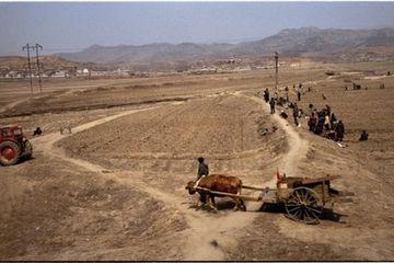 Warga Korea Utara Pilih Hujan Batu di Negeri Orang