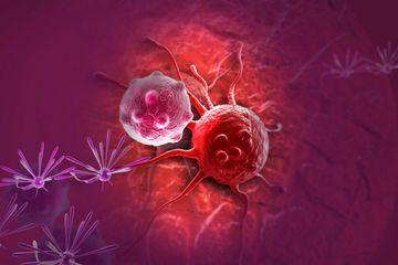 Empat Jenis Pengobatan Berikut Terbukti Bisa Melawan Tumor Ganas