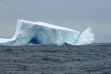 Pencairan Es di Antartika Meningkat 6 Kali Lipat, Bagaimana Dampaknya?