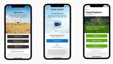 Apple Lengkapi Aturan Tampilan Aplikasi Berlangganan di App Store