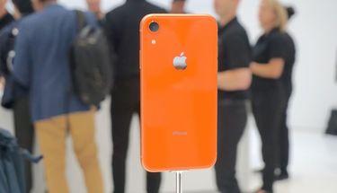 Penerus iPhone XR Dirumorkan Tersedia Dua Warna, Hijau dan Lavender
