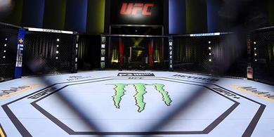 Hampir Setengah Petarung MMA Pakai Ganja, Wakil Presiden UFC Tidak Kaget