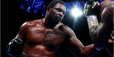 Lawan Petarung UFC, Dillian Whyte Tidak Mau Seperti Floyd Mayweather