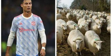 Belum Sepekan Ditinggali, Cristiano Ronaldo Terpaksa Pindah Rumah Gara-gara Tetangga Berisik