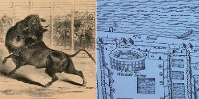 Inilah Olahraga Kuno yang Terkenal Sadis Mengorbankan Anjing Sebagai Umpannya