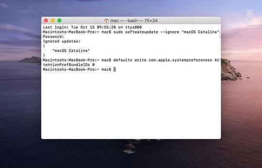 Hapus notifikasi Software Update macOS Catalina