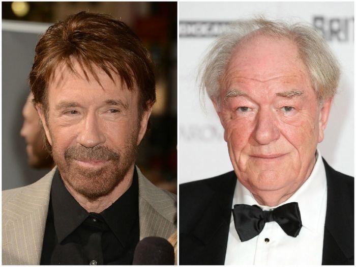 Chuck Norris dan Michael Gambon