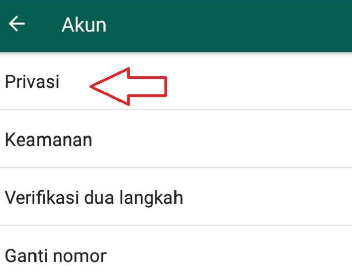 Begini Nih Caranya Kepoin Status Whatsapp Tanpa Ketahuan Ampuh