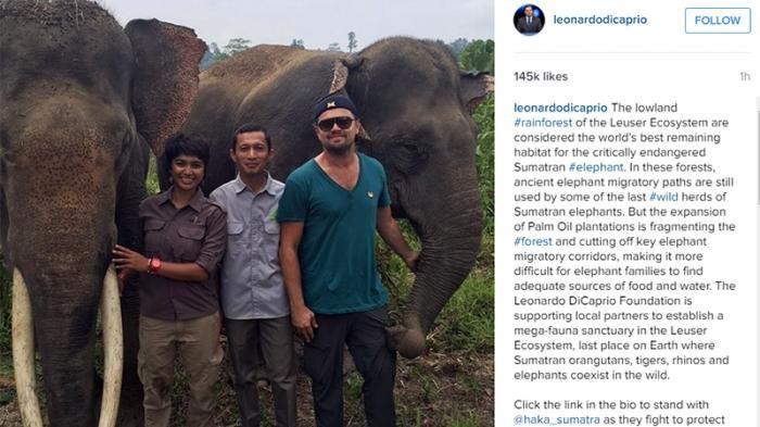 Bunta dan Leonardo DiCaprio.