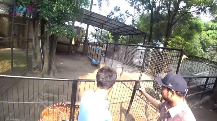 Penangkaran hewan di halaman rumah Alshad Kautsar Ahmad