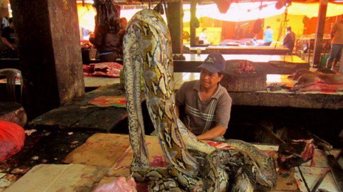 Daging piton dijual di pasar tradisional