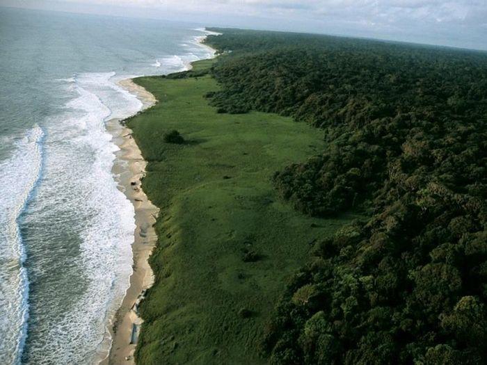 Taman Nasional Loango