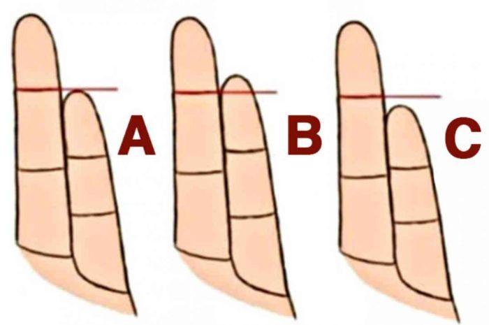 Bentuk jari manis dan kelingking bisa cerminkan kepribadian, mana yang jadi milikmu?